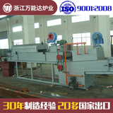 Mesh Belt Furnace with muffle